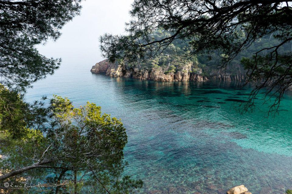 Name:  IN10101_20180426182515_galeriaProyecto7_mediterraneaninseis.jpg Views: 45 Size:  181.8 KB